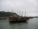 Halong Bay 2009
