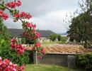 Glenmorangie - stara szkocka destylarnia