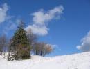 Andrzejówka - zima, wiosna