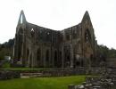 Walia, Tintern Abbey