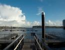 Walia, doki w Cardiff